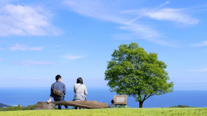 結婚相談所を横浜で探すなら!通いやすくてカウンセラーが上手に結婚までサポートしてくれるところがおすすめ
