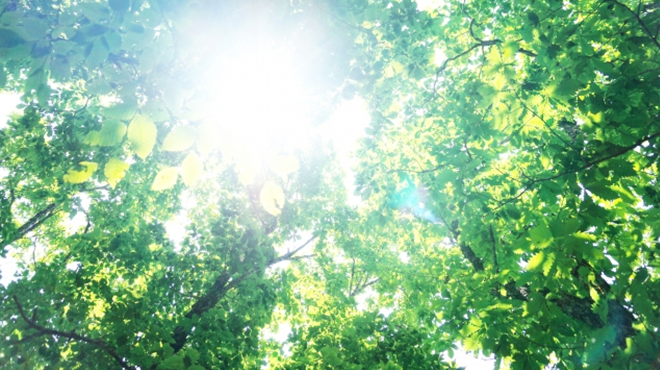 【避暑地】遅い夏休み派の方に絶対おすすめしたいリフレッシュの旅7選【ぷち旅行】